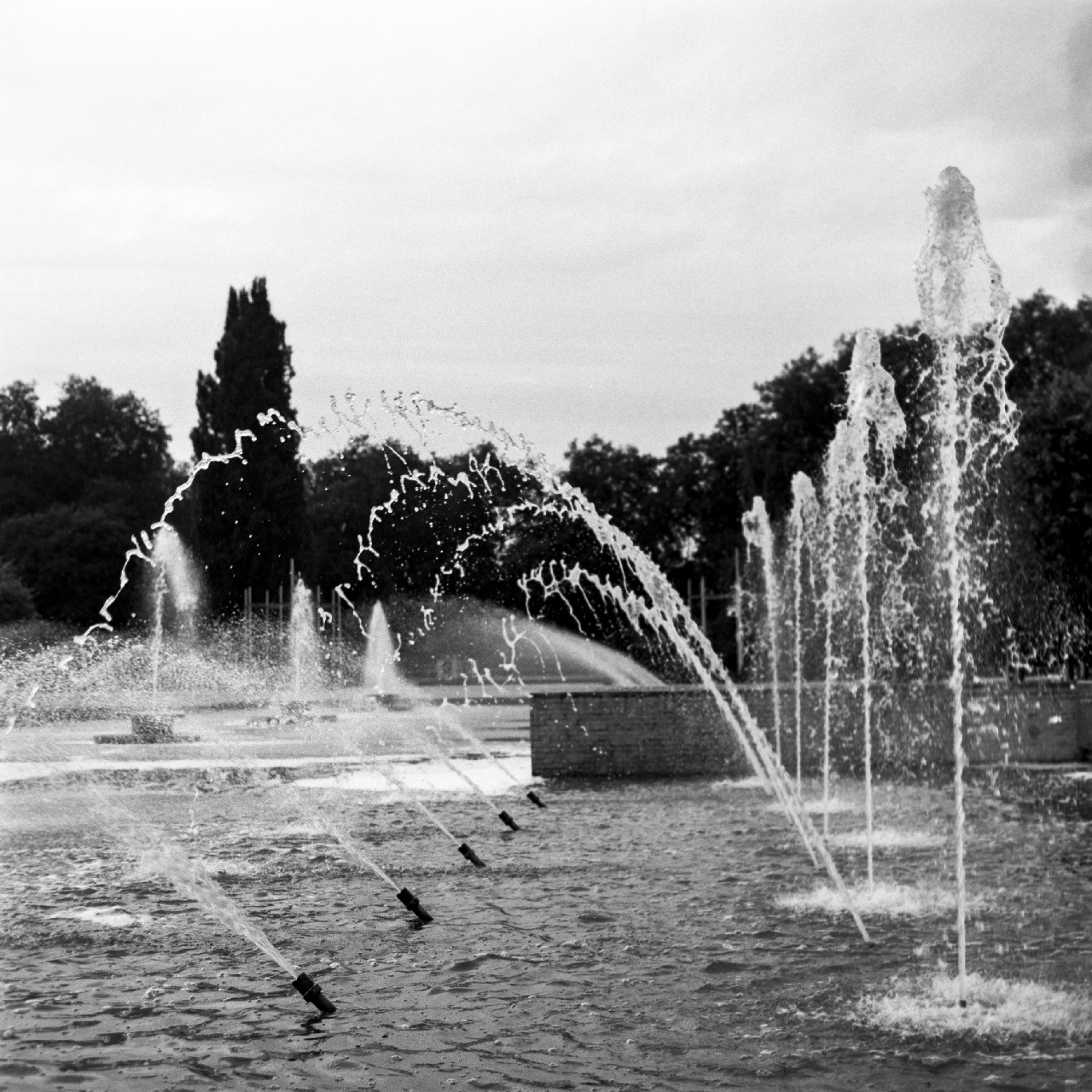Water pool at Battersea park